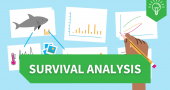 Learning Hub animations: Survival analysis image