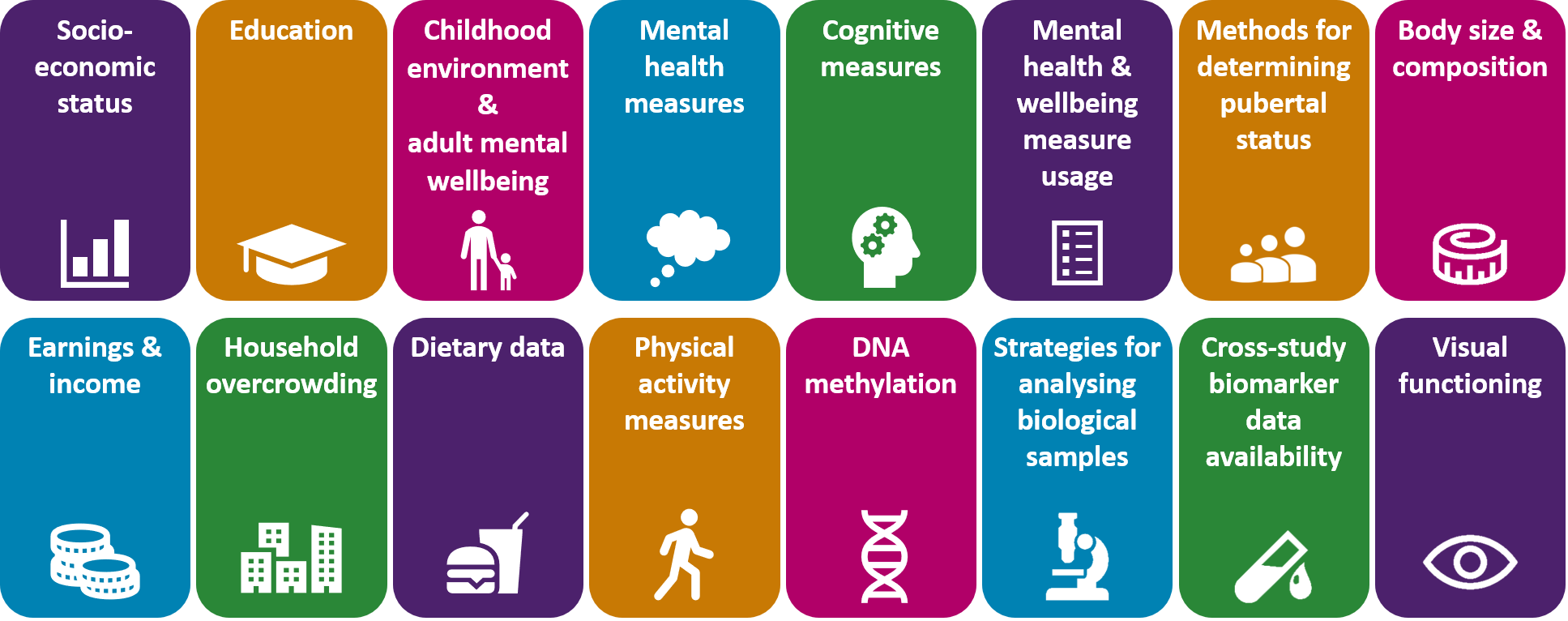 Graphic outlining the different harmonisation topics: socio-economic status, education, childhood environment and adult wellbeing, mental health measures, cognitive measures, mental health and wellbeing measure usage, methods for determining pubertal status, body size and composition, earnings and income, household overcrowding, dietary data, physical activity measures, DNA methylation, strategies for analysing biological samples, cross-study biomarker data availability, and visual functioning