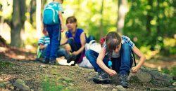 Greener neighbourhoods may be good for children's brains image