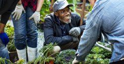 Does work-life balance affect pro-environmental behaviour? image